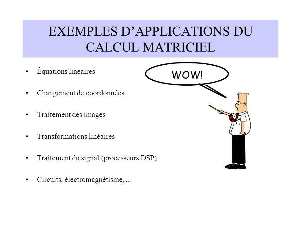 EXEMPLES D'APPLICATIONS DU CALCUL MATRICIEL
