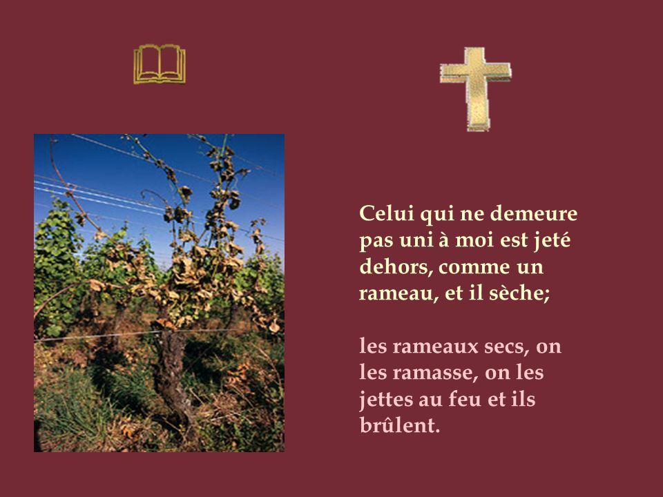 Celui qui ne demeure pas uni à moi est jeté dehors, comme un rameau, et il sèche;