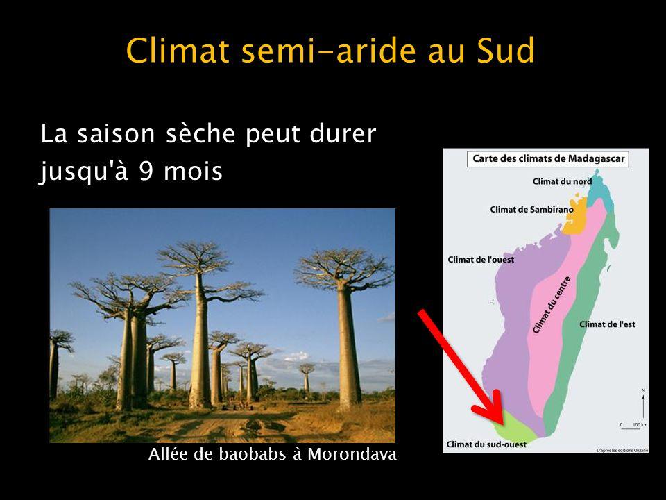 Climat semi-aride au Sud