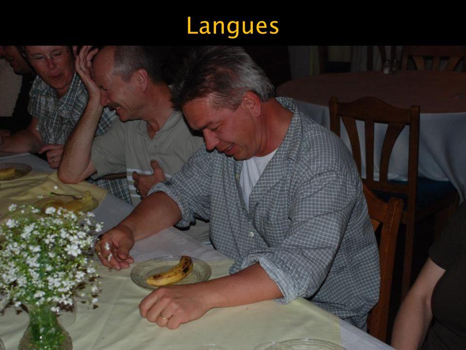 Langues Le malgache, d'origine indonésienne
