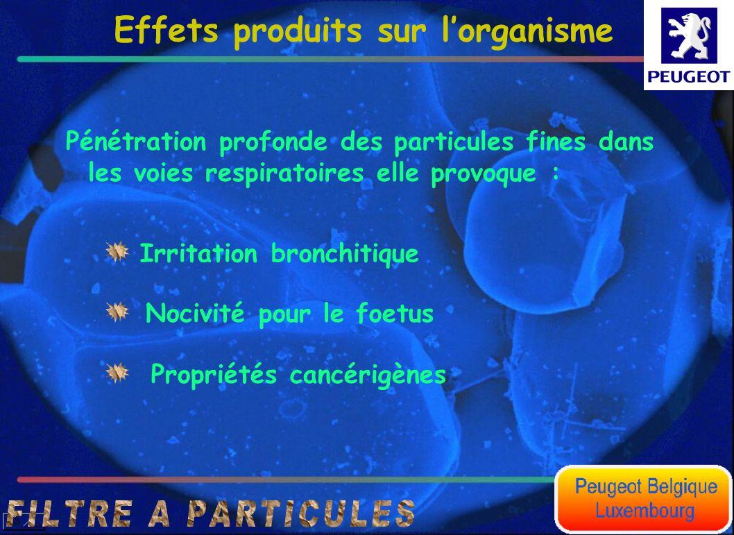 Effets produits sur l'organisme