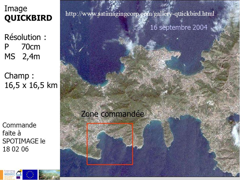 Image QUICKBIRD Résolution : P 70cm MS 2,4m Champ : 16,5 x 16,5 km