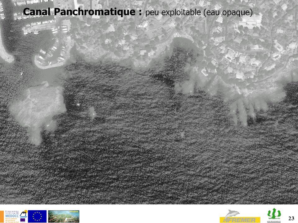 Canal Panchromatique : peu exploitable (eau opaque)