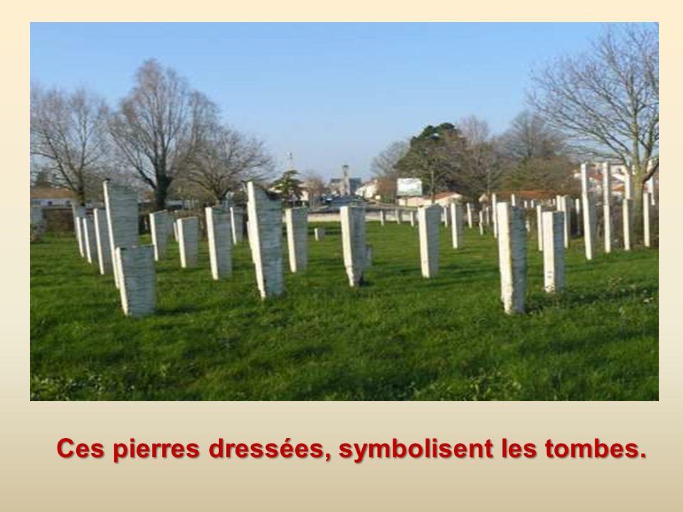 Ces pierres dressées, symbolisent les tombes.