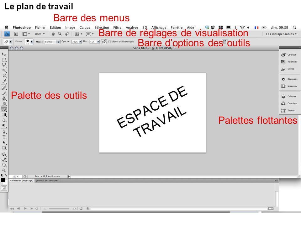 ESPACE DE TRAVAIL Barre des menus Barre de réglages de visualisation