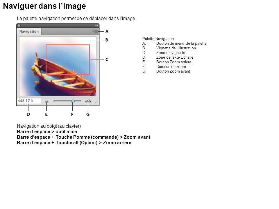 Naviguer dans l'image La palette navigation permet de ce déplacer dans l'image. Palette Navigation.