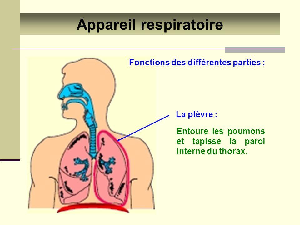 Appareil respiratoire