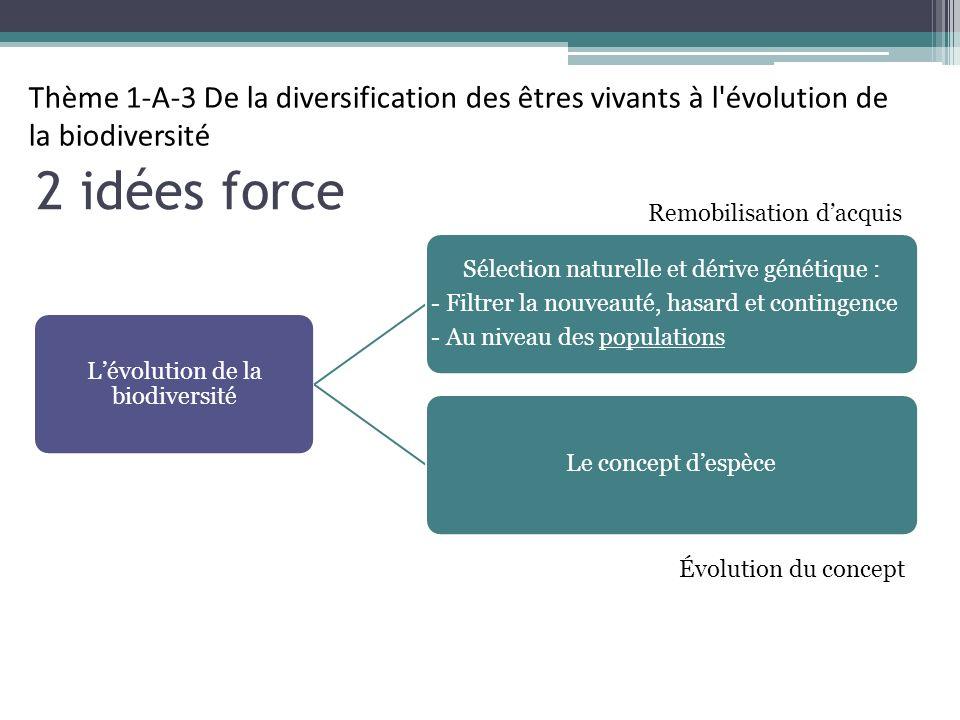 Thème 1-A-3 De la diversification des êtres vivants à l évolution de la biodiversité