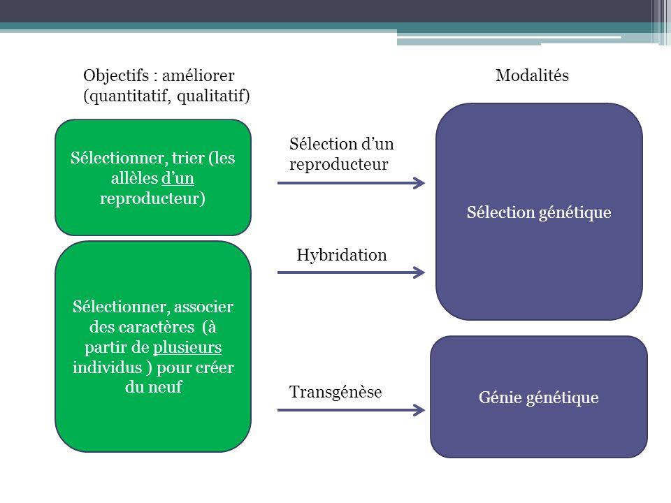 (quantitatif, qualitatif) Modalités