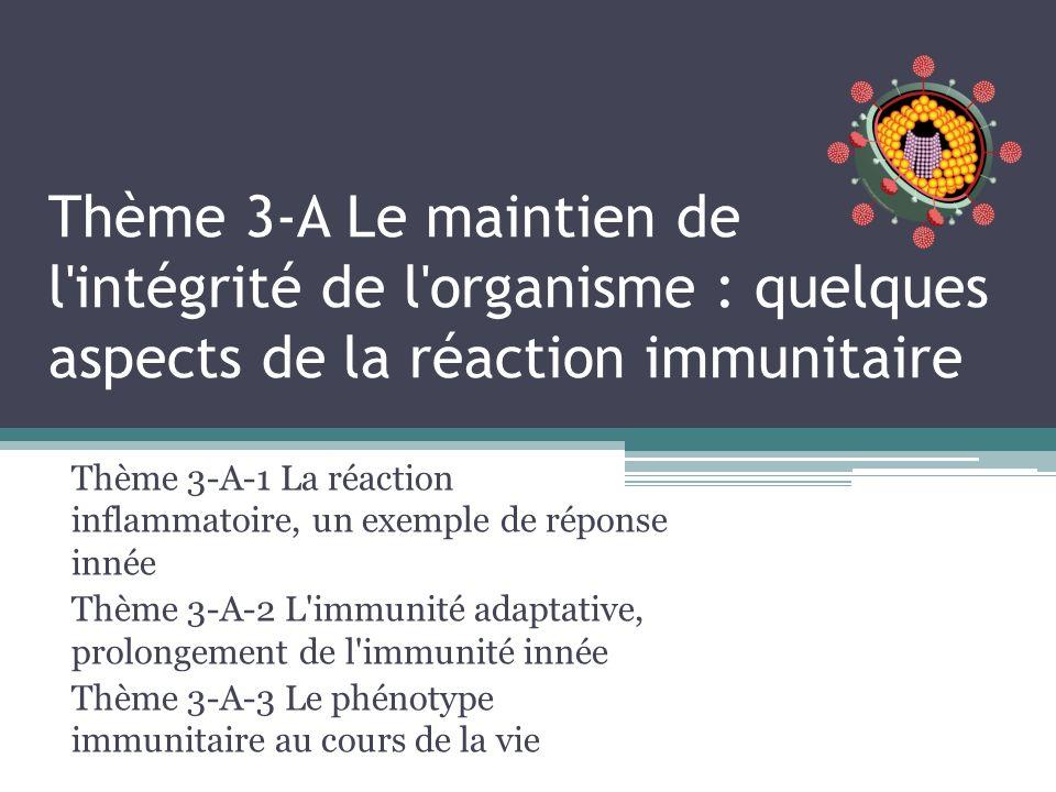 Thème 3-A Le maintien de l intégrité de l organisme : quelques aspects de la réaction immunitaire