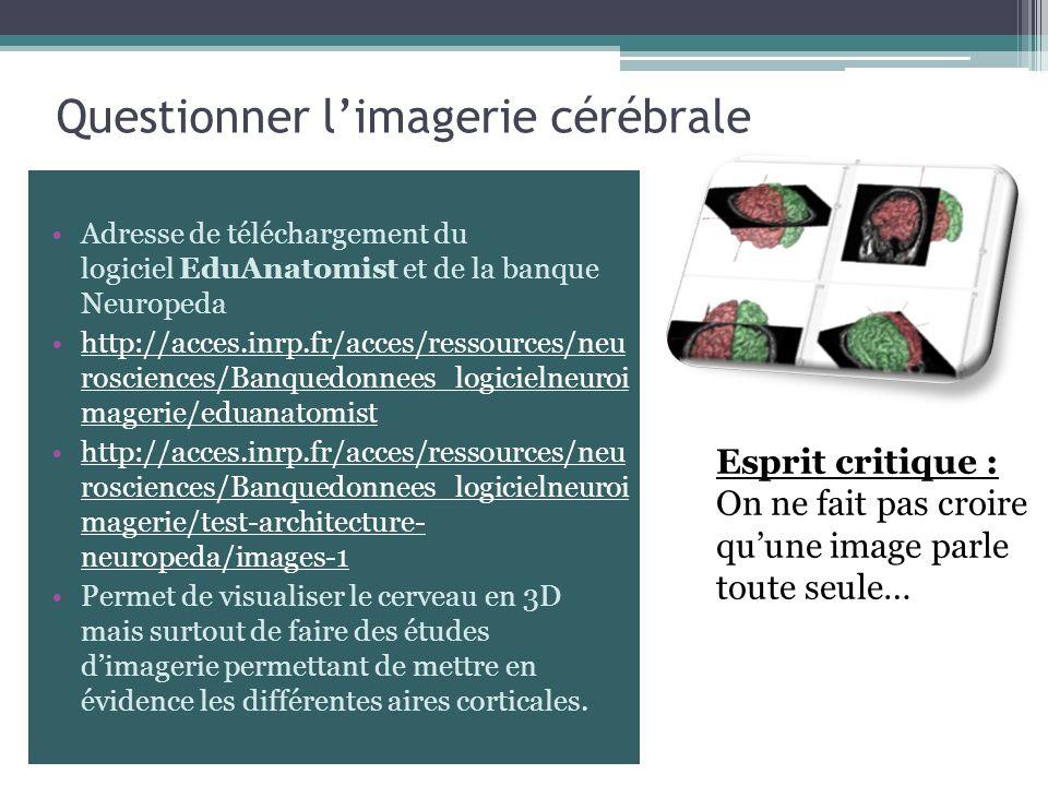 Questionner l'imagerie cérébrale