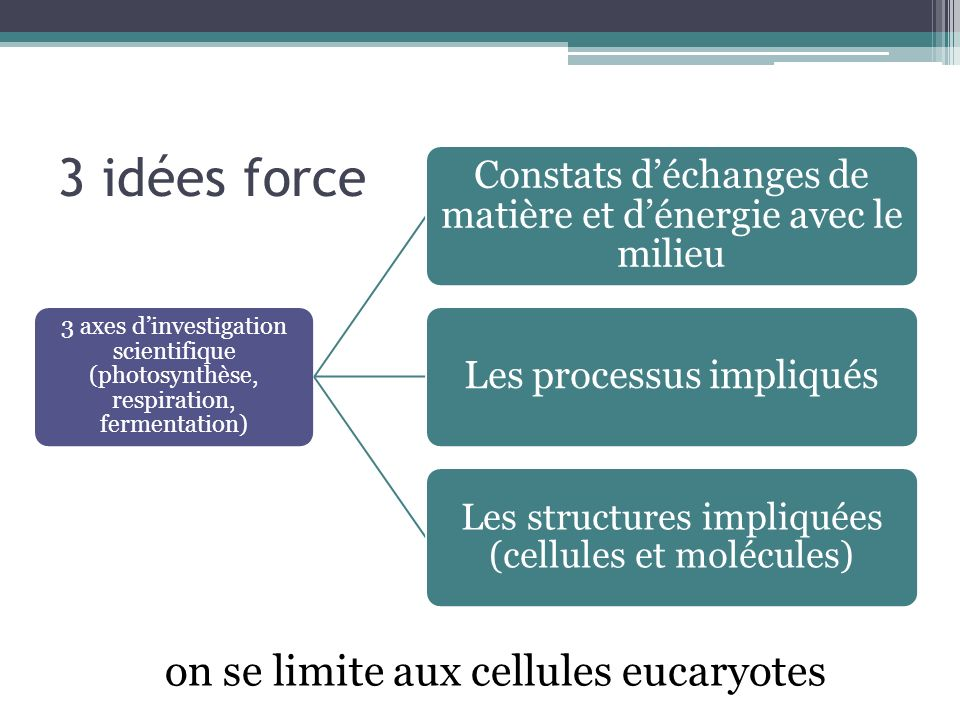 3 idées force on se limite aux cellules eucaryotes