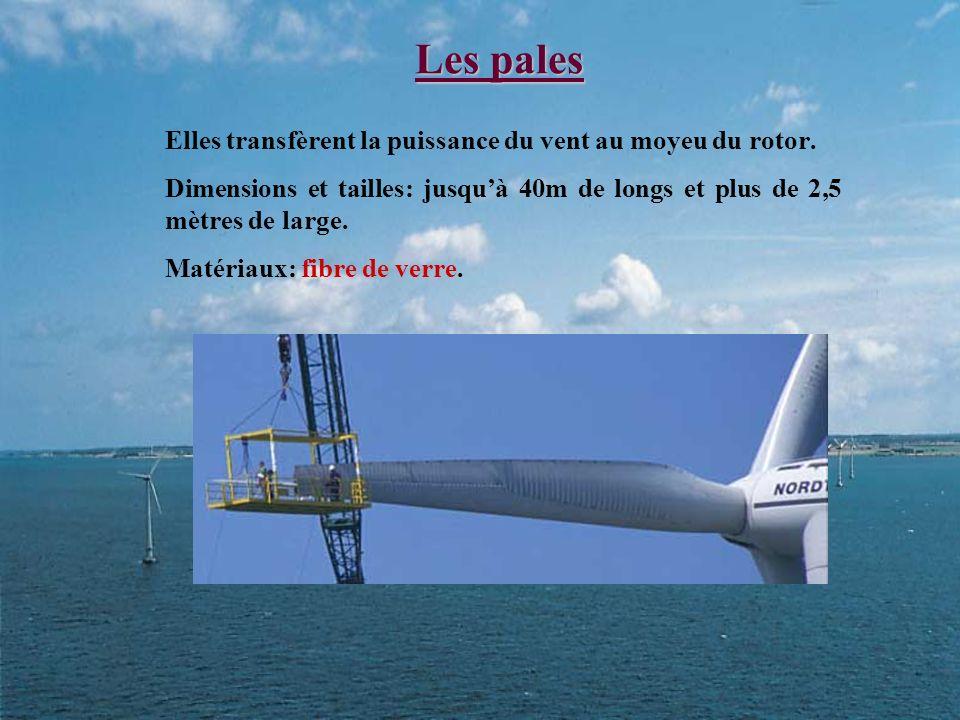 Les pales Elles transfèrent la puissance du vent au moyeu du rotor.