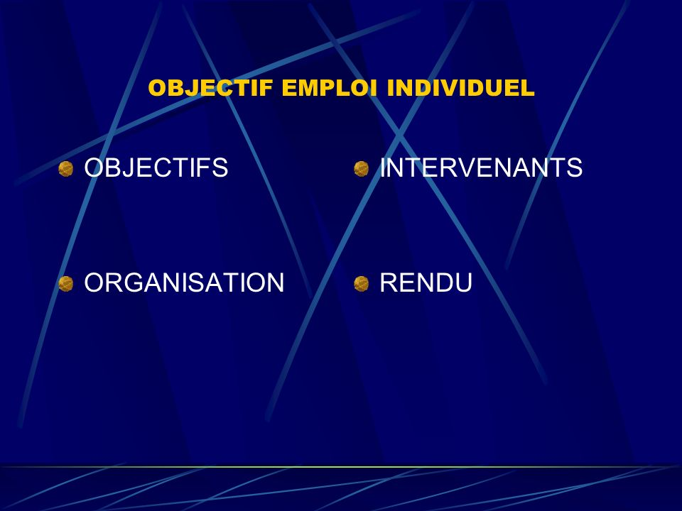 OBJECTIF EMPLOI INDIVIDUEL