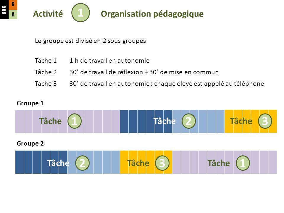 1 1 2 3 2 3 1 Activité Organisation pédagogique Tâche Tâche Tâche