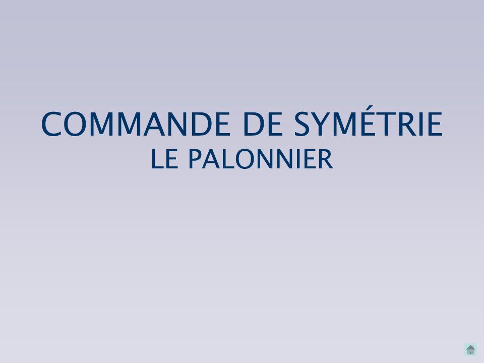 COMMANDE DE SYMÉTRIE LE PALONNIER