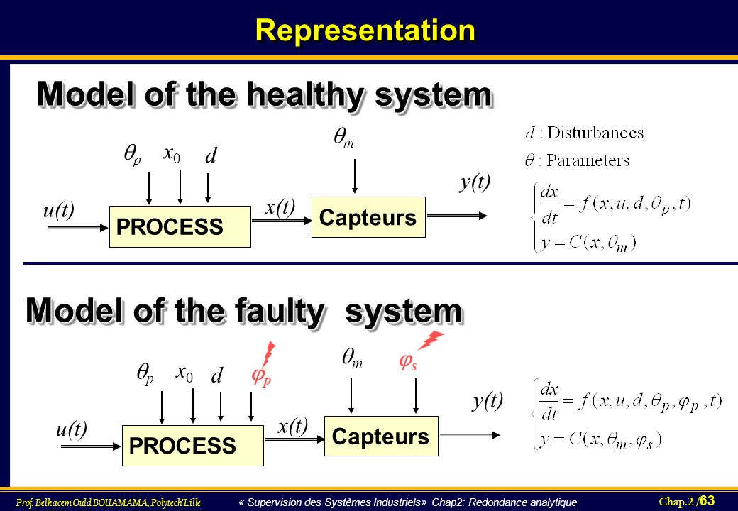 Model of the healthy system