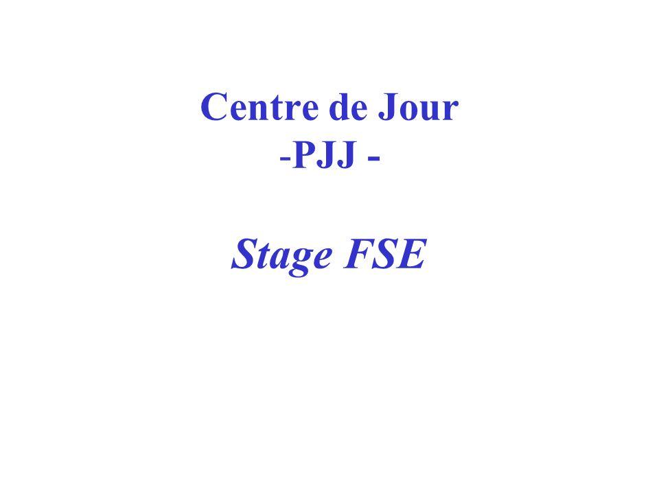 Centre de Jour -PJJ - Stage FSE