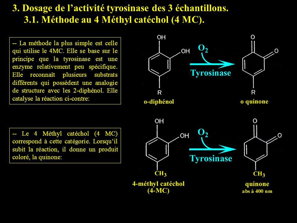 3.1 4 MC 3. Dosage de l'activité tyrosinase des 3 échantillons.