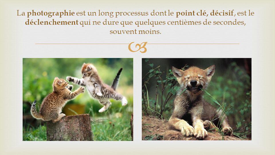 La photographie est un long processus dont le point clé, décisif, est le déclenchement qui ne dure que quelques centièmes de secondes, souvent moins.