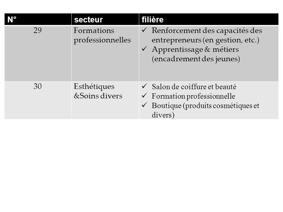 N° secteur. filière. 29. Formations professionnelles. Renforcement des capacités des entrepreneurs (en gestion, etc.)