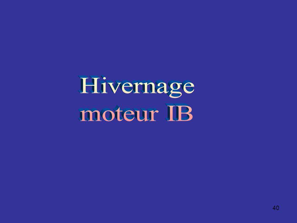 Hivernage moteur IB