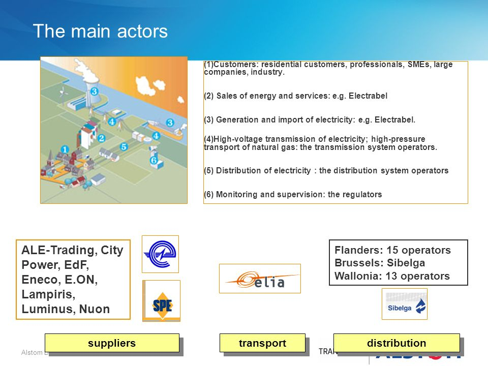 The main actors (1)Customers: residential customers, professionals, SMEs, large companies, industry.