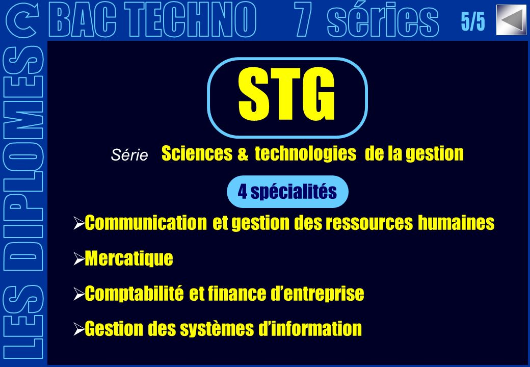 Série Sciences & technologies de la gestion