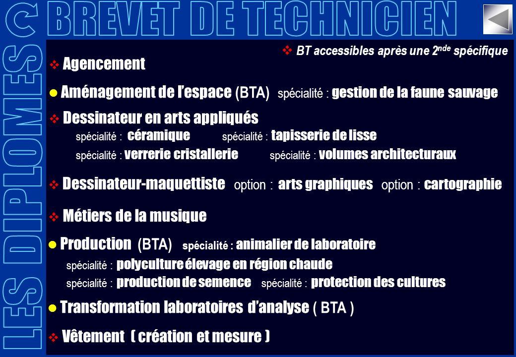 BREVET DE TECHNICIEN LES DIPLOMES Agencement