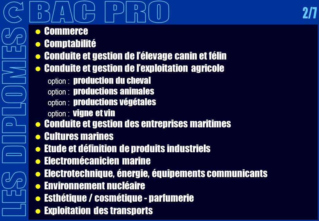 BAC PRO 2/7 LES DIPLOMES Commerce Comptabilité
