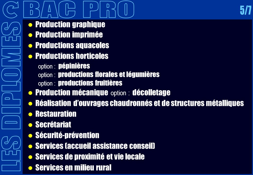 BAC PRO 5/7 LES DIPLOMES Production graphique Production imprimée