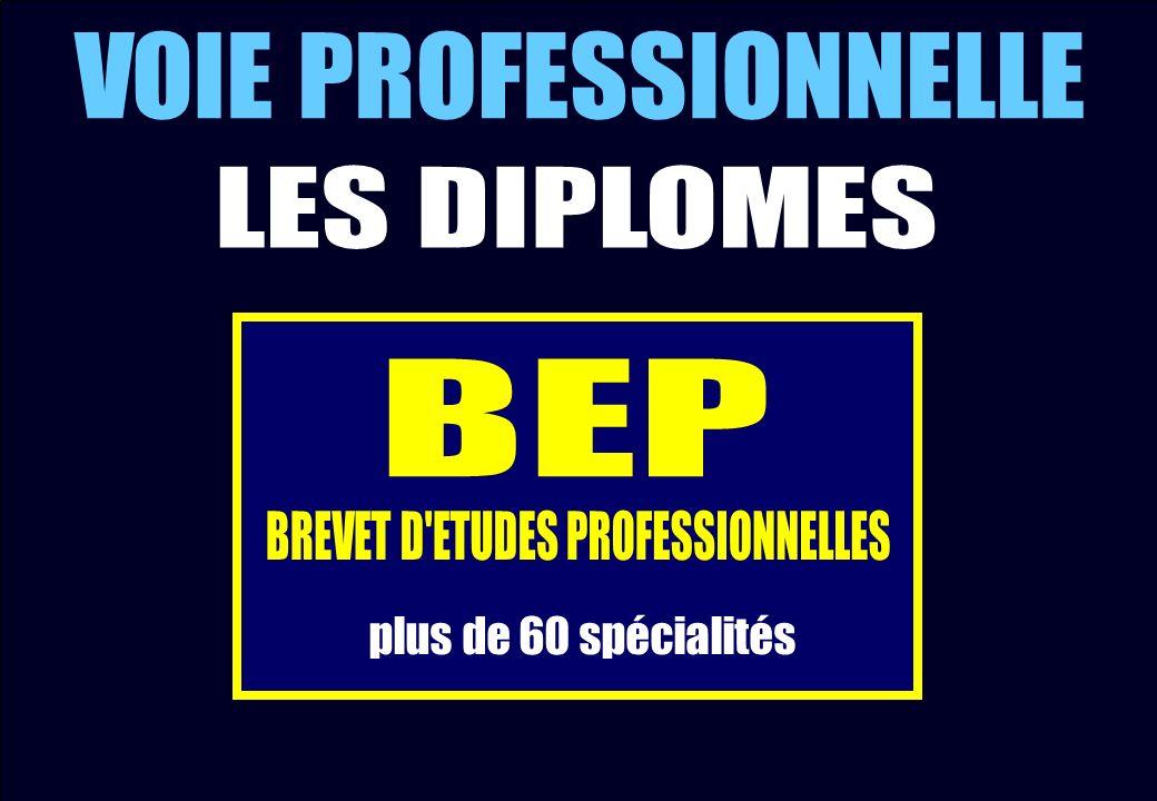 BREVET D ETUDES PROFESSIONNELLES