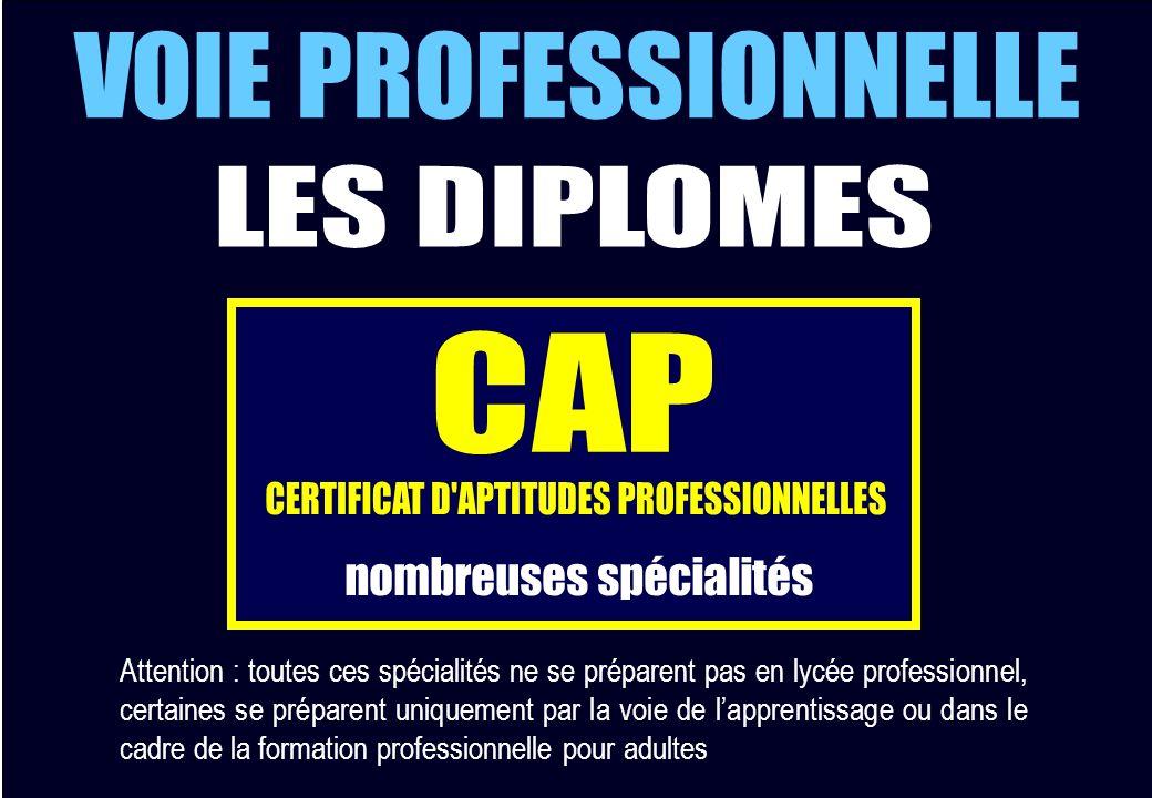 CERTIFICAT D APTITUDES PROFESSIONNELLES