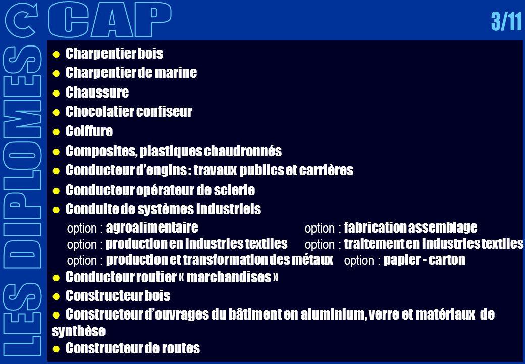 CAP 3/11 LES DIPLOMES Charpentier bois Charpentier de marine Chaussure