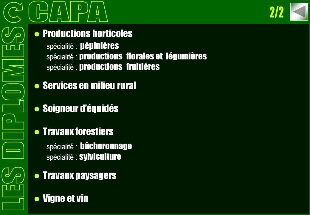 CAPA 2/2 LES DIPLOMES Productions horticoles Services en milieu rural