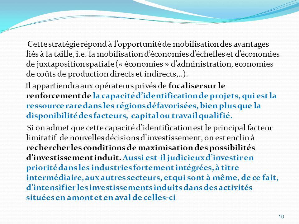 Cette stratégie répond à l'opportunité de mobilisation des avantages liés à la taille, i.e. la mobilisation d'économies d'échelles et d'économies de juxtaposition spatiale (« économies » d'administration, économies de coûts de production directs et indirects,..).