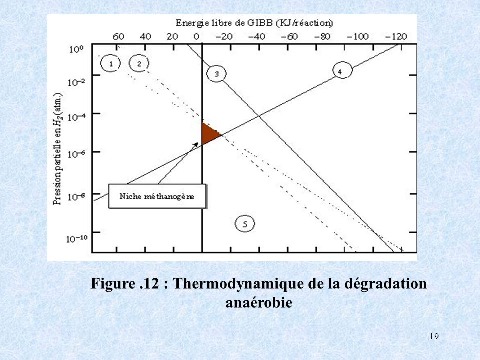Figure .12 : Thermodynamique de la dégradation anaérobie