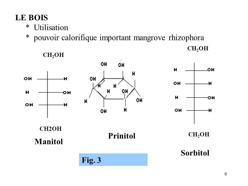 * pouvoir calorifique important mangrove rhizophora