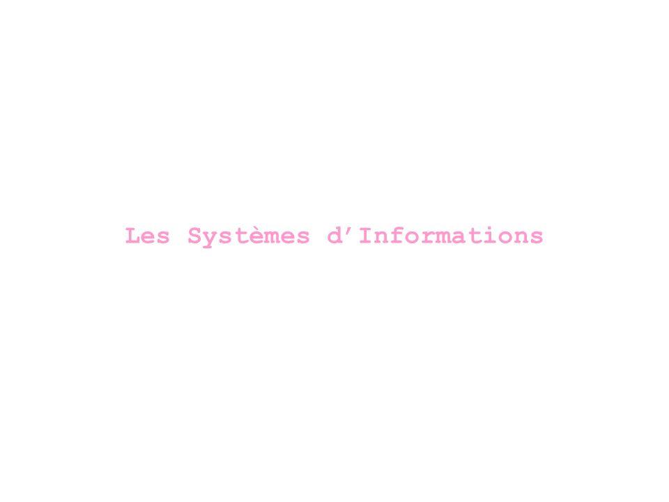 Les Systèmes d'Informations