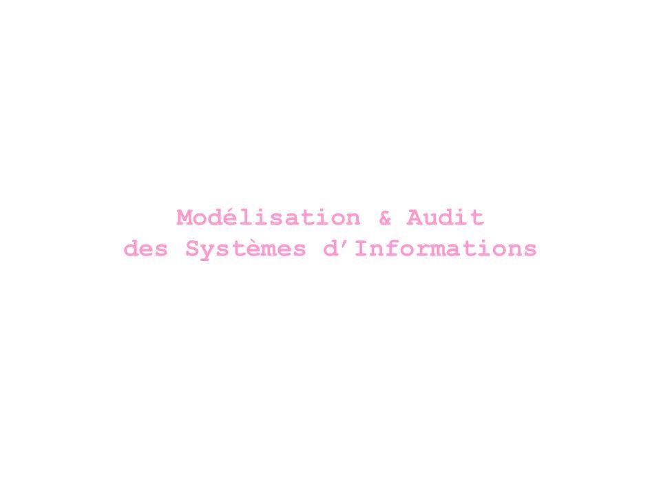 Modélisation & Audit des Systèmes d'Informations