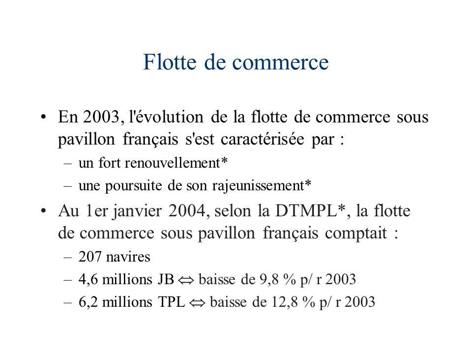 Flotte de commerce En 2003, l évolution de la flotte de commerce sous pavillon français s est caractérisée par :