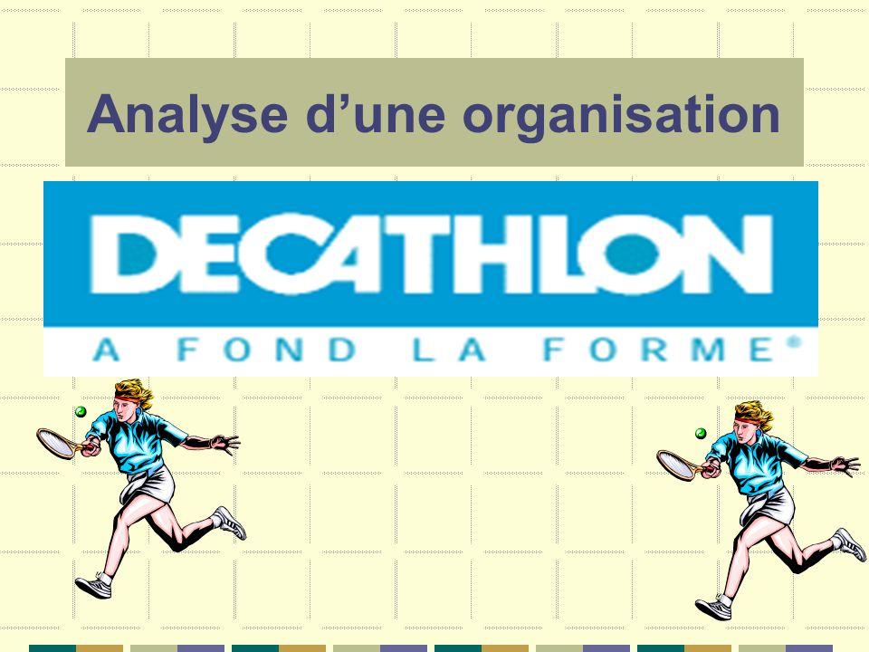 Analyse d'une organisation