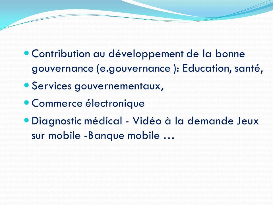 Contribution au développement de la bonne gouvernance (e