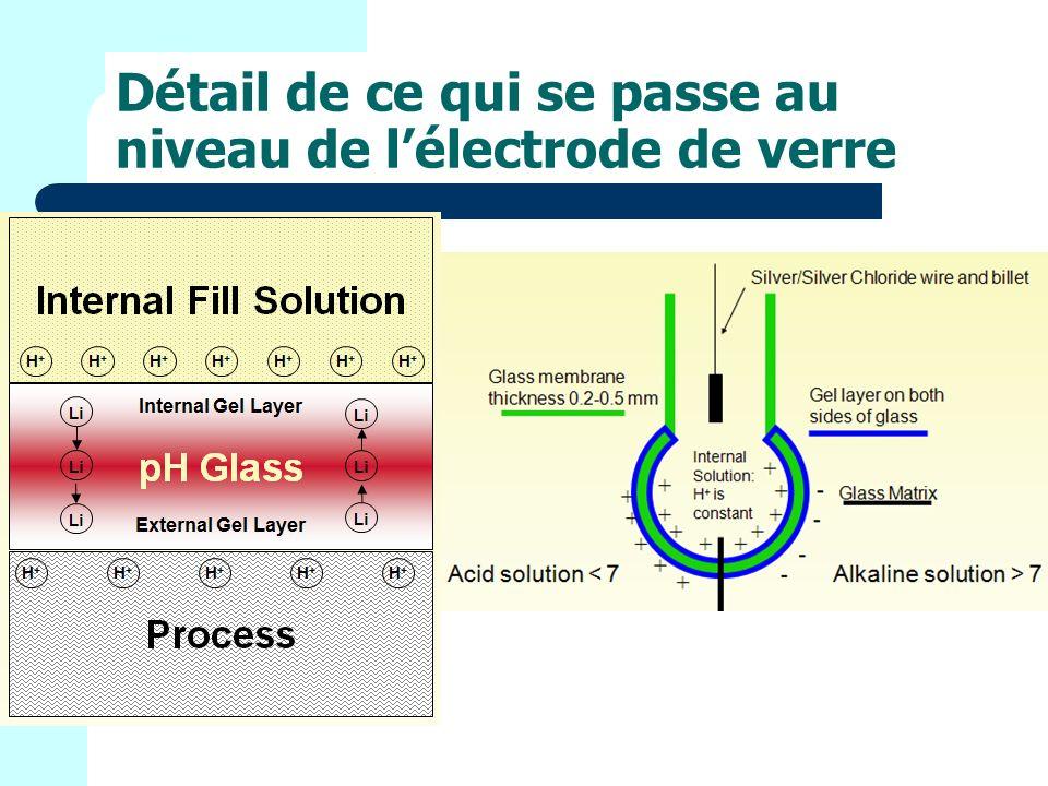 Détail de ce qui se passe au niveau de l'électrode de verre