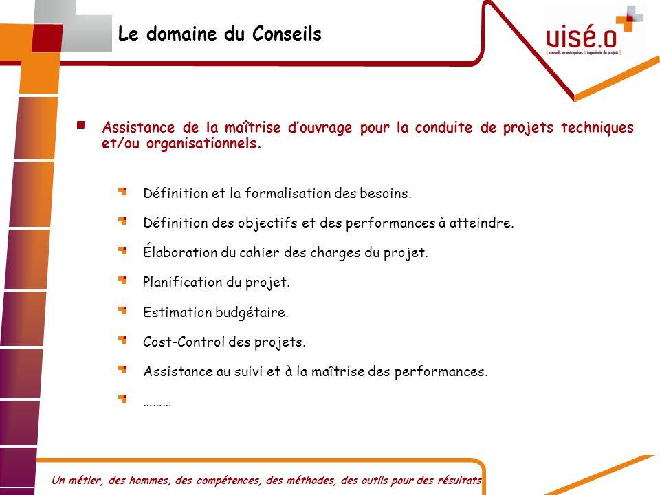 Le domaine du Conseils Assistance de la maîtrise d'ouvrage pour la conduite de projets techniques et/ou organisationnels.