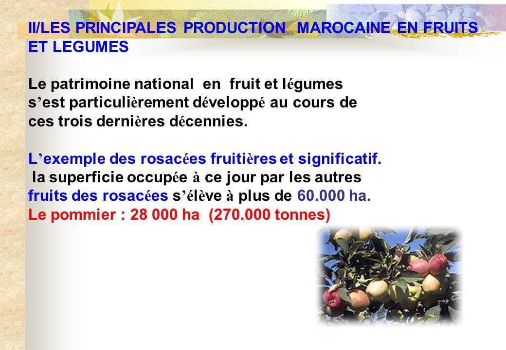 II/LES PRINCIPALES PRODUCTION MAROCAINE EN FRUITS ET LEGUMES