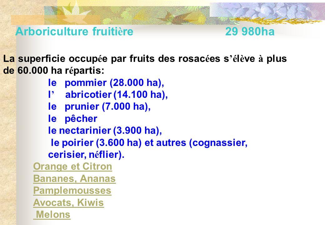 Arboriculture fruitière 29 980ha