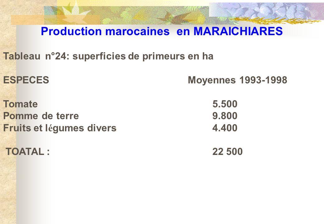 Production marocaines en MARAICHIARES