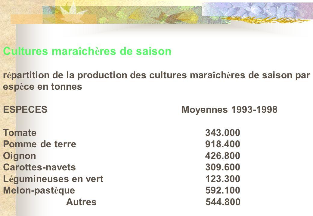 Cultures maraîchères de saison