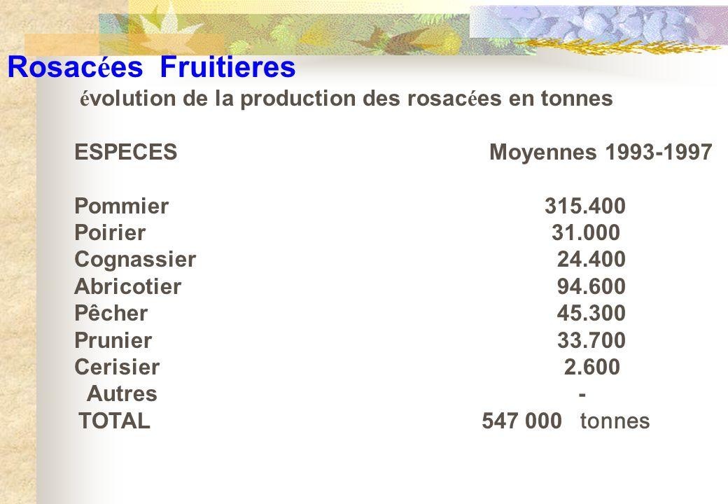 Rosacées Fruitieres évolution de la production des rosacées en tonnes